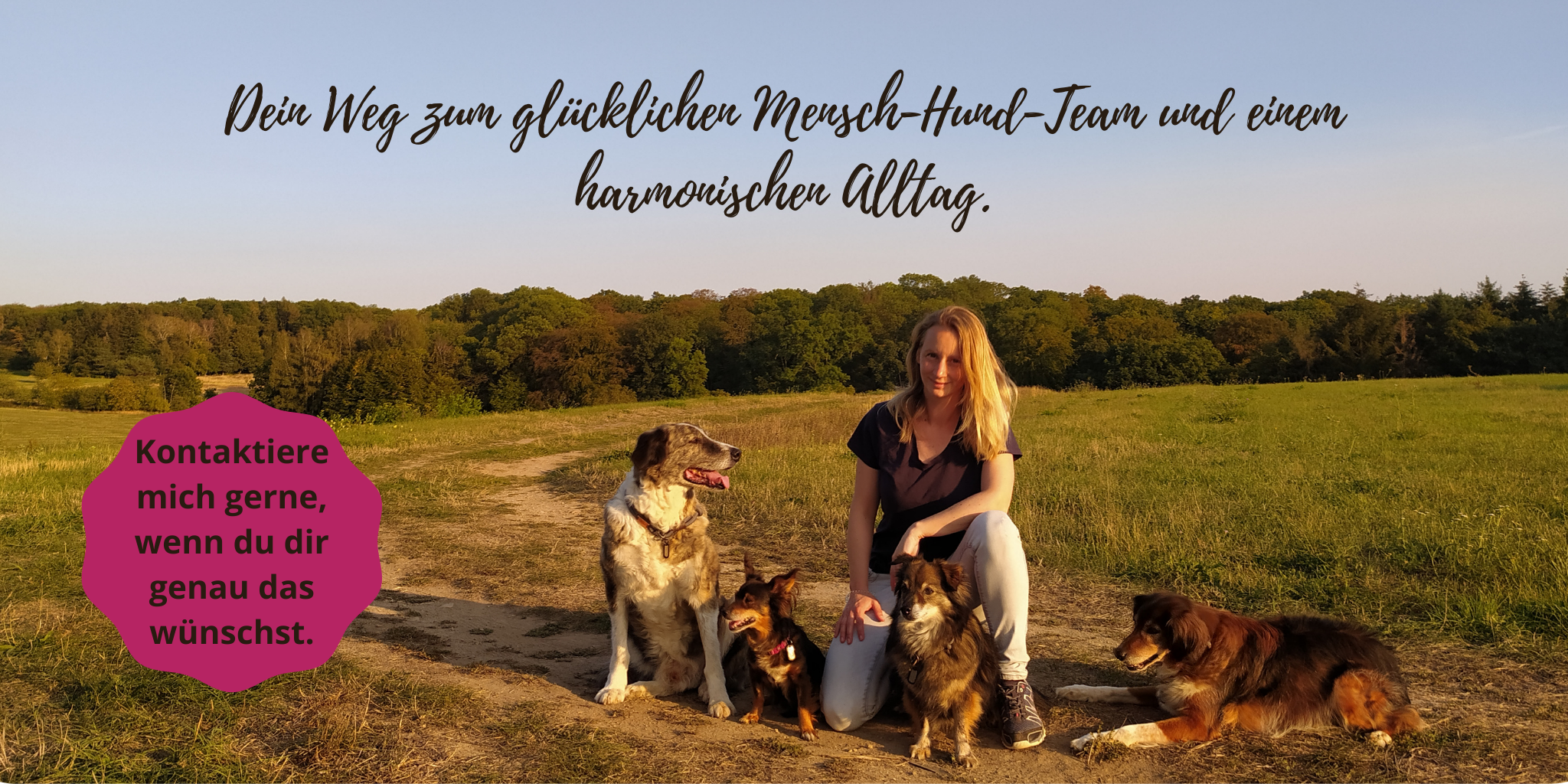 Dein Weg zum glücklichen Mensch-Hund-Team und einem harmonsichen Alltag. (1)